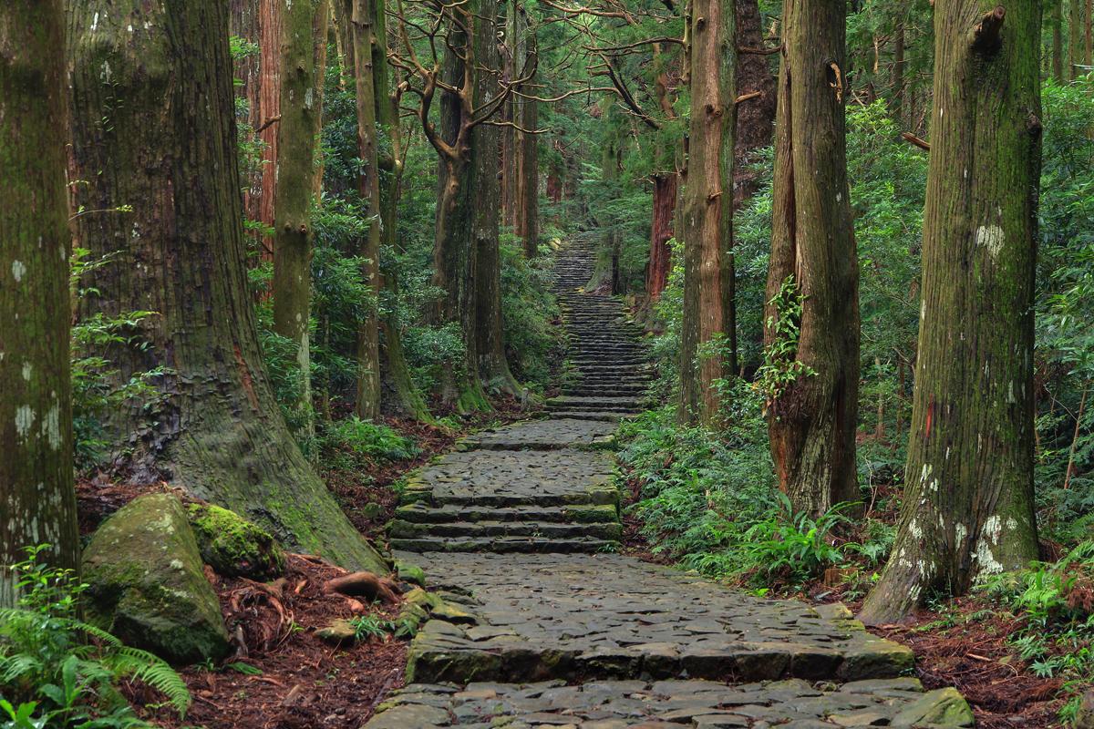 和歌山の熊野古道の写真